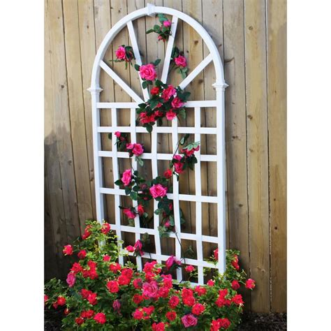 Trellis Suppliers The Garden Oracle Supports Trellises Gardening Advice