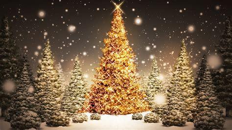 Marvelous Christmas Lifhts #3: Christmas-Tree-HD-Widescreen-Wallpaper-23.jpg