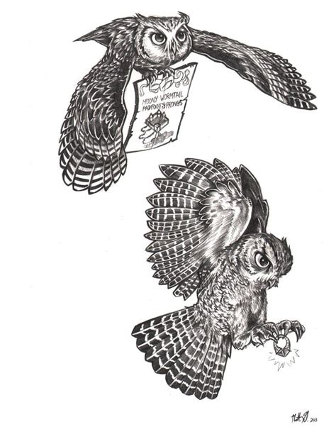 barred owl clipart harry potter owl pencil and in color