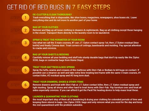 bed bugs treatment on skin bed bugs treatment bed bug beat down