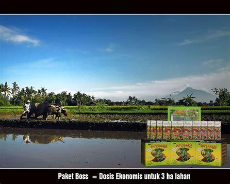 Harga Ton Produk Nasa paket hemat naikkan padi minimal 1 ton ha petaniku