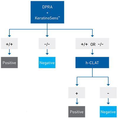 test in vitro in vitro sensitisation tests for cosmetic ingredients