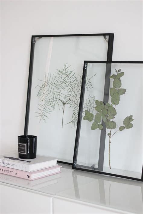 diy floating frame herbarium handgemachte