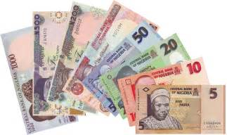 Image result for the naira