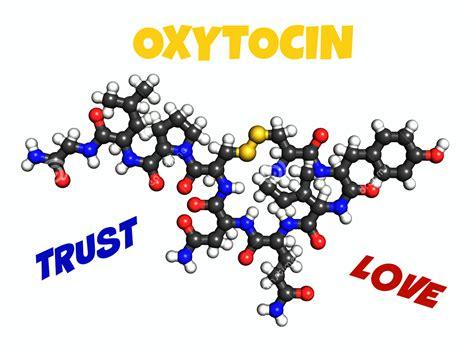oxytocin for dogs dogs conscious companion