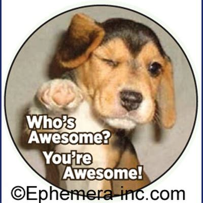 whose awesome you re awesome who s awesome you re awesome