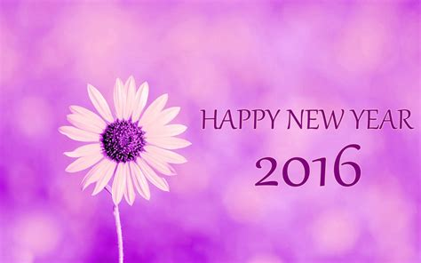 purple flower power happy new year 2016