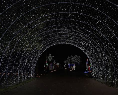 drive through christmas lights animebgx