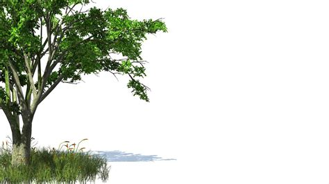 trees background free hd backgrounds 3d animated tree and grass