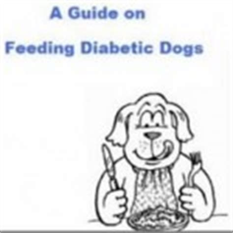 best food for diabetic dogs diabetes treatment canine diabetes remedies and treatments