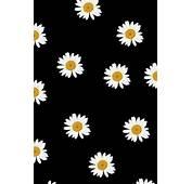 Daisy Wallpaper Collection 55