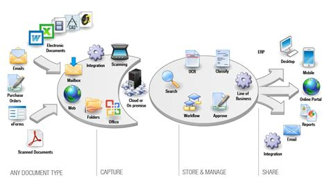 workflow and document management document management system dms virgo