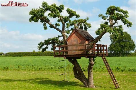 sugli alberi italia dove dormire e mangiare sugli alberi in italia