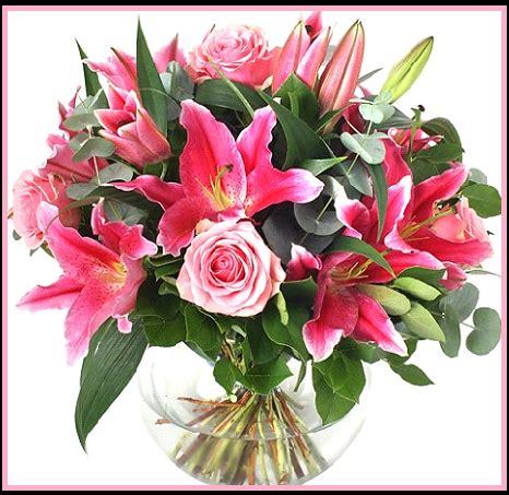 imagenes rosas brillantes hermosas descargar gratis imagenes de rosas brillantes para celular
