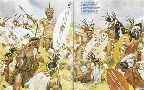 zulu civil war   weapons  warfare