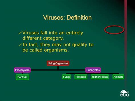 Virus Shedding Definition by Ppt C R E A T I N G A N D D E L I V E R I N G B E T T E