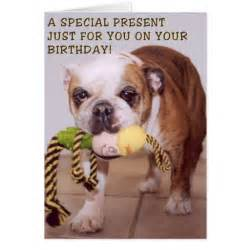 bull dog birthday card zazzle
