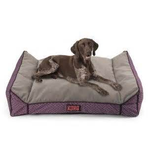 Amazon Dog Beds Amazon Com Kong Lounger Dog Bed Purple Pet Supplies
