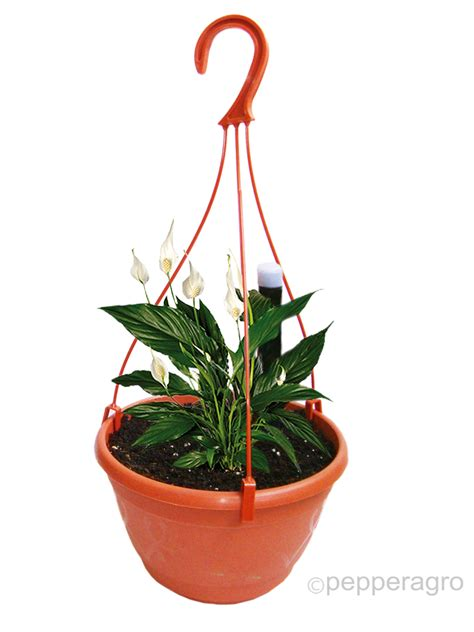 Self Watering Hanging Planters by Self Watering Pot Hanging Planter With Potting Soil Set Of Two