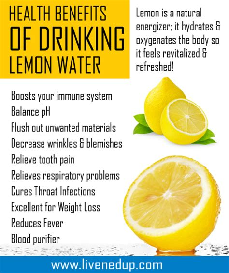 How Often To Drink Lemon Detox Water by What Starts Ends Lemon Water
