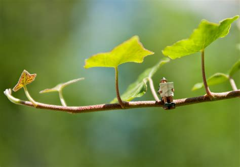 tiny tainy miniaturfiguren globe photography