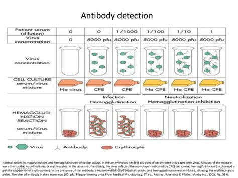 viral test lab diagnosis of viruses