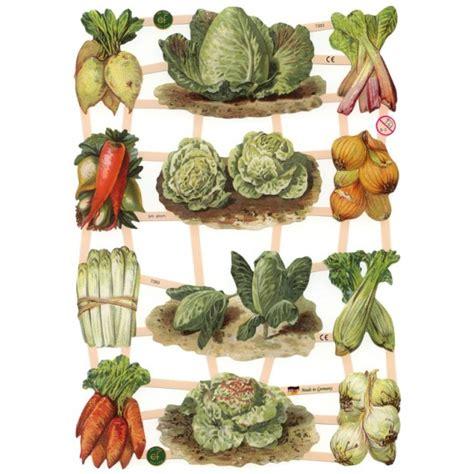 Mixed Garden Vegetables Scraps Germany New For 2012 Vegetable Scraps In Garden