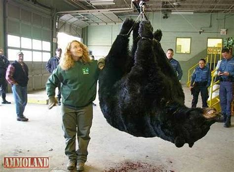 Records In Nj 829lb Black Takes Record In Nj Hunt