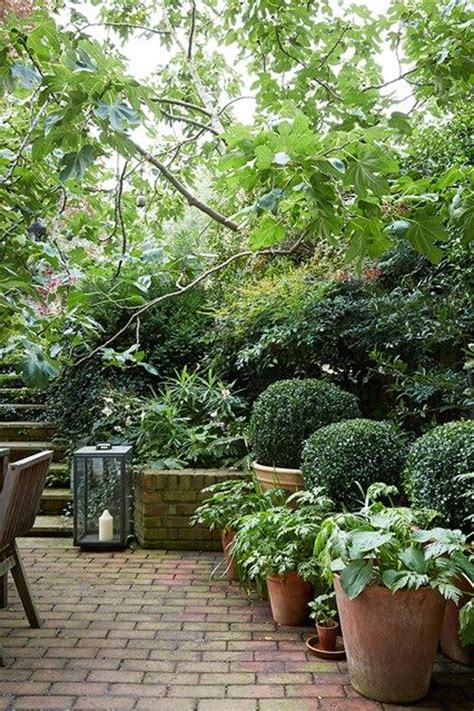 17 best images about shade garden for patio slope on