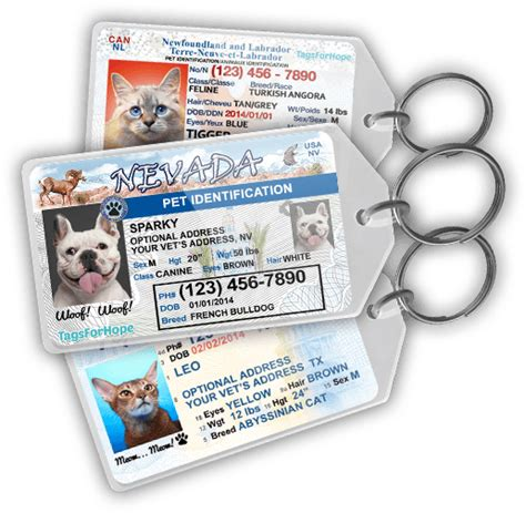 puppy id tags tagsforhope personalized pet id tags for dogs cats