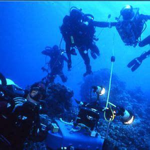 coraux du pacifique coral reef adventure fiche film cin 233 ma canoe ca r 233 cifs coralliens court m 233 trage allocin 233