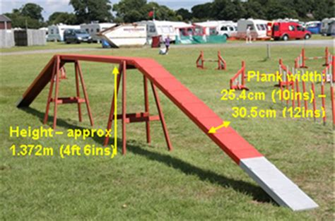 how to start agility for dogs agility course obstacles