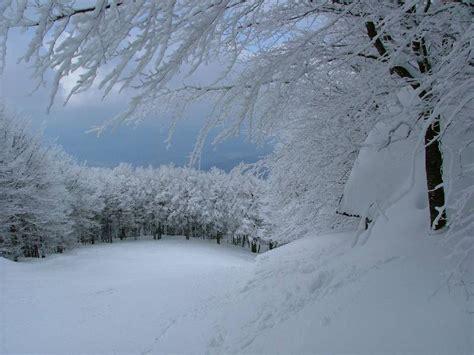 monte amiata web amiata neve il portale ufficiale dell amiata invernale
