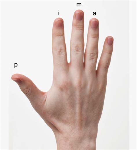la mano sulla la posizione della mano destra nella chitarra classica