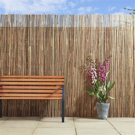 25 best ideas about bamboo screening on pinterest