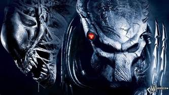 alien predator wallpapers wallpaper cave