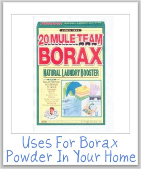 can you use laundry detergent in a rug doctor uses for borax powder for cleaning laundry stain removal and more gardening on a shoe string