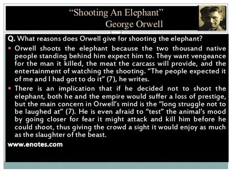 Shooting An Elephant And Other Essays by Shooting An Elephant And Other Essays Best Elephant 2017