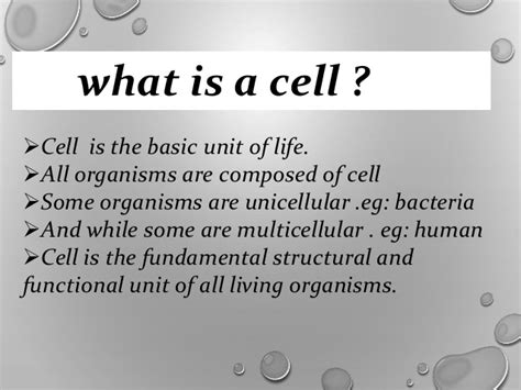 what is in law unit cells the basic unit of life