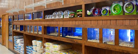 buzz n b s aquarium pet shop erie s favorite local