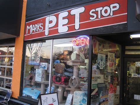 pet store updated pet store ban initiated in san francisco pets families