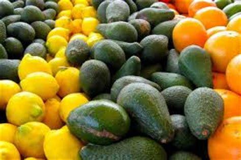 alimentos con mas prote nas 5 frutas con m 225 s prote 237 nas la gu 237 a de las vitaminas
