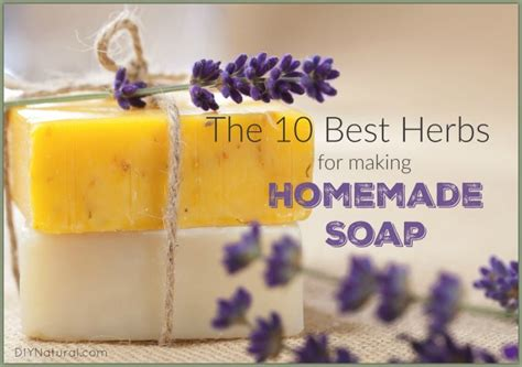 Benefits Of Handmade Soap - soap the best herbs to use in your recipes