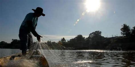 noticia sobre seguro do pescador seguro desemprego do pescador artesanal est 225 valendo o