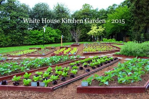 white house vegetable garden still fab and traveling a tour of the white house gardens a review and tips