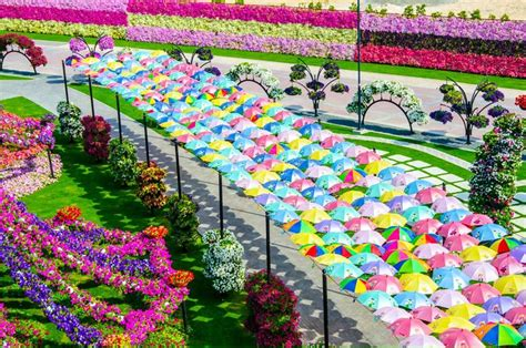 Travel Trip Journey Dubai Miracle Garden World Biggest Flower Gardens In The World