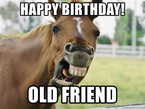 Horse Birthday Meme - happy birthday old friend horse luis meme generator