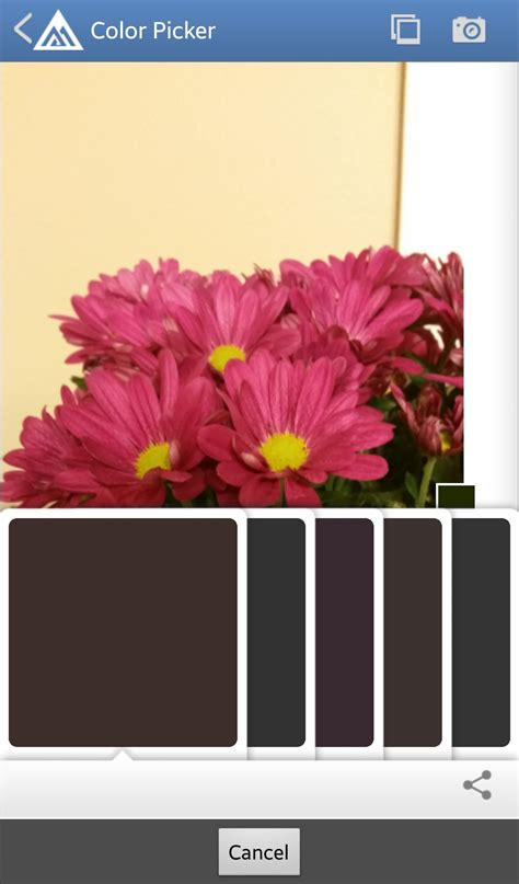 evejulien apps to match and find paint color palettes from a photo