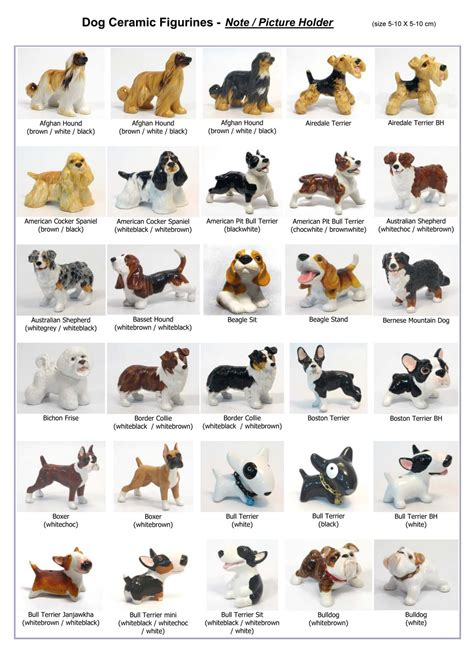 all types of dogs breeds home types