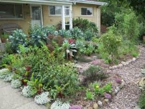 permaculture paradise